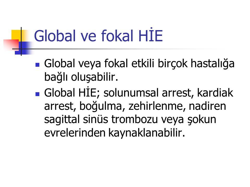 Global ve fokal HİE Global veya fokal etkili birçok hastalığa bağlı oluşabilir.