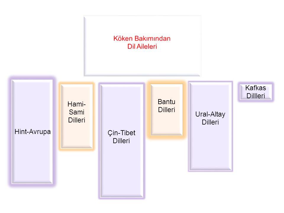Köken Bakımından Dil Aileleri. Hint-Avrupa. Ural-Altay Dilleri. Hami- Sami Dilleri. Çin-Tibet Dilleri.