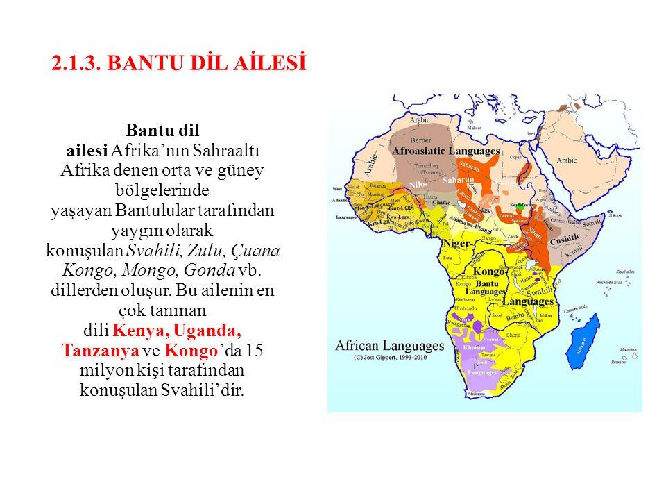2.1.3. BANTU DİL AİLESİ
