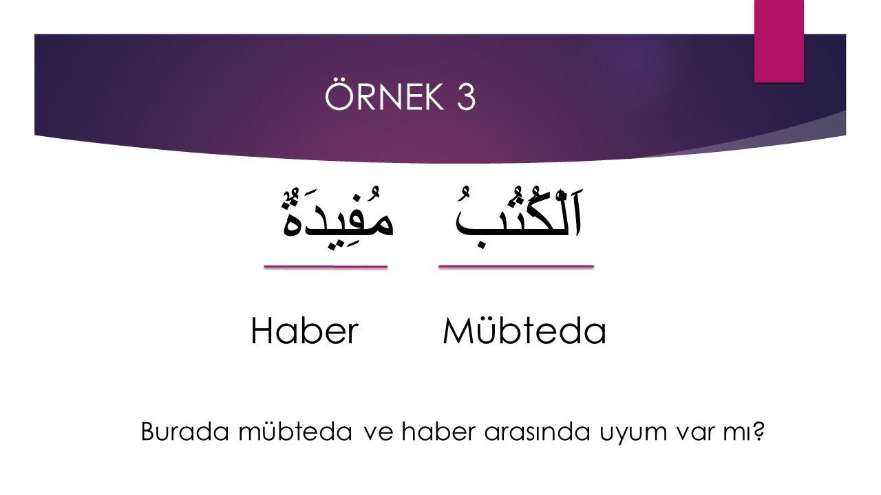 اَلْكُتُبُ مُفِيدَةٌ Haber Mübteda ÖRNEK 3
