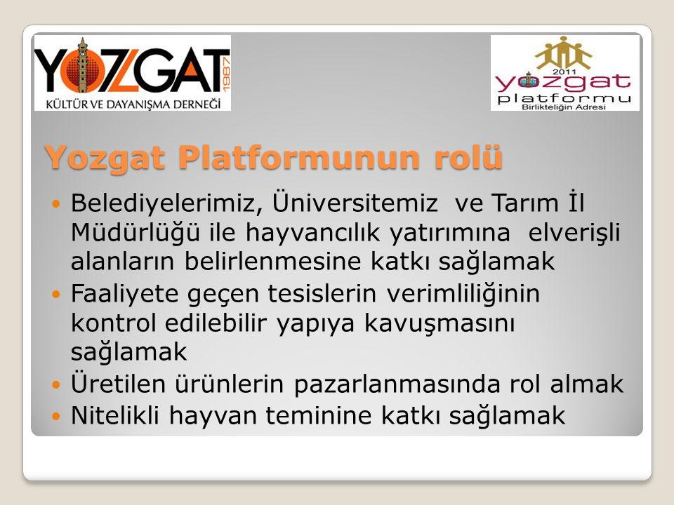 Yozgat Platformunun rolü