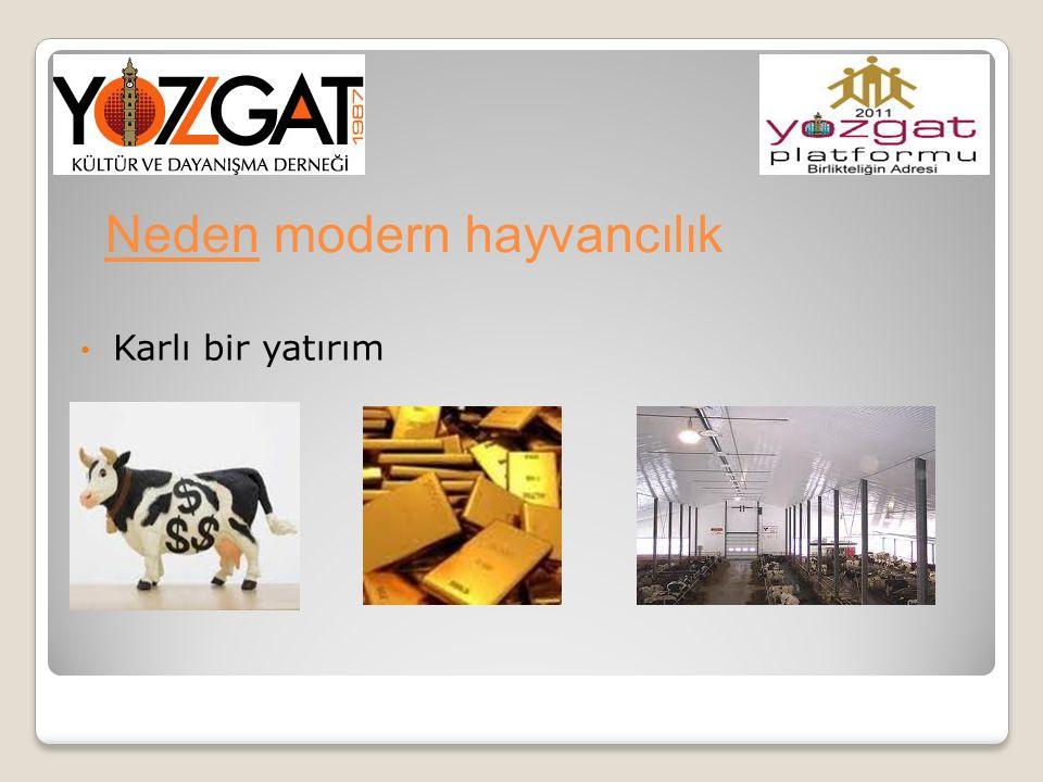 Neden modern hayvancılık