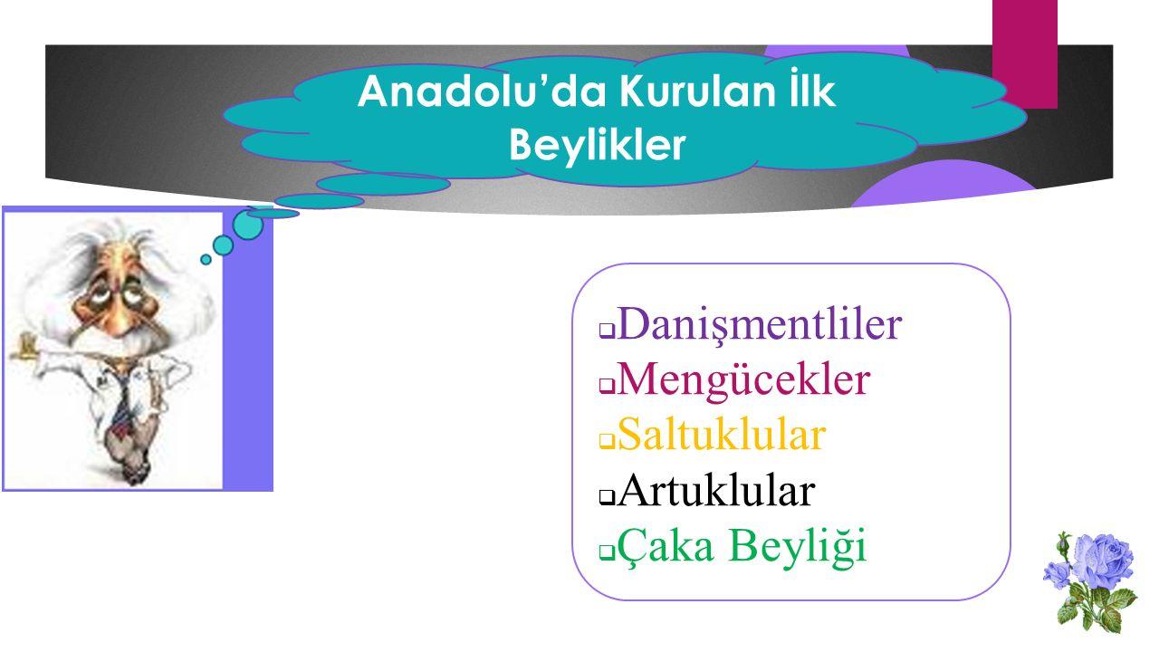 Anadolu'da Kurulan İlk Beylikler