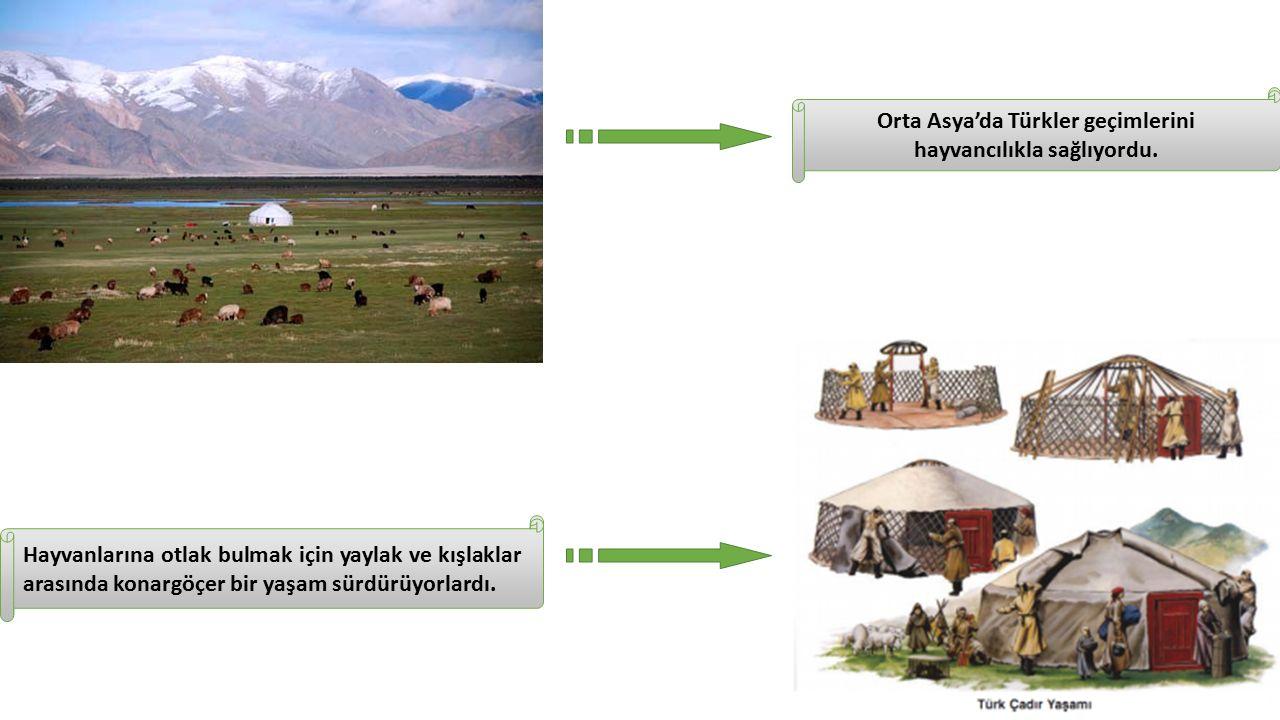 Orta Asya'da Türkler geçimlerini hayvancılıkla sağlıyordu.