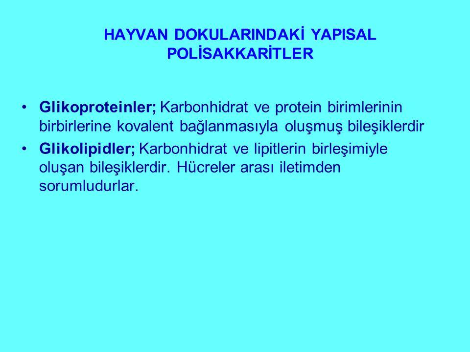HAYVAN DOKULARINDAKİ YAPISAL POLİSAKKARİTLER