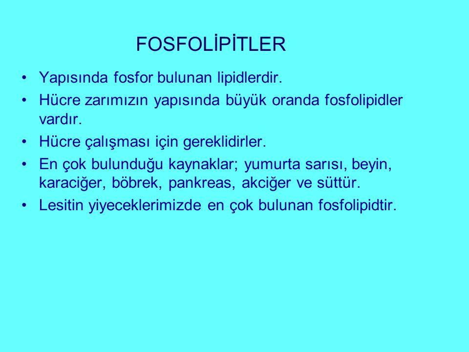 FOSFOLİPİTLER Yapısında fosfor bulunan lipidlerdir.