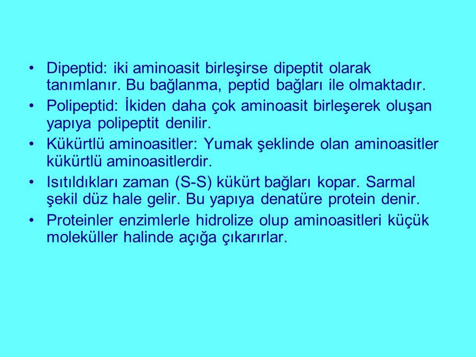 Dipeptid: iki aminoasit birleşirse dipeptit olarak tanımlanır