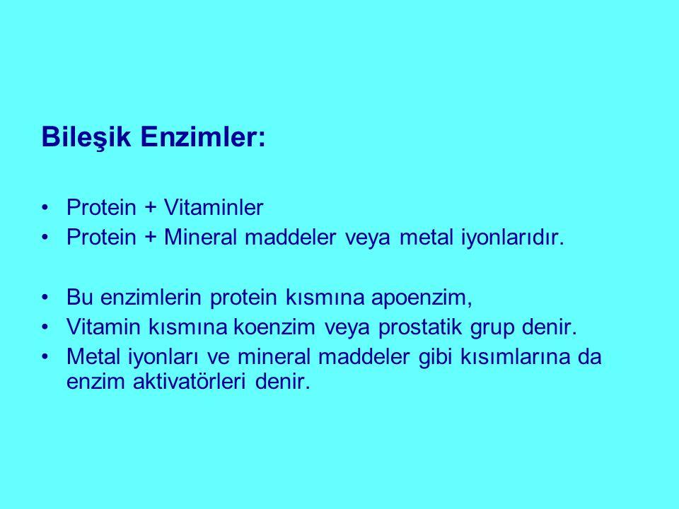Bileşik Enzimler: Protein + Vitaminler