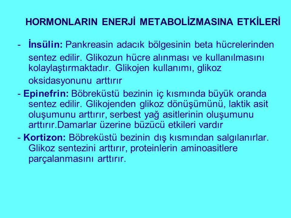 HORMONLARIN ENERJİ METABOLİZMASINA ETKİLERİ
