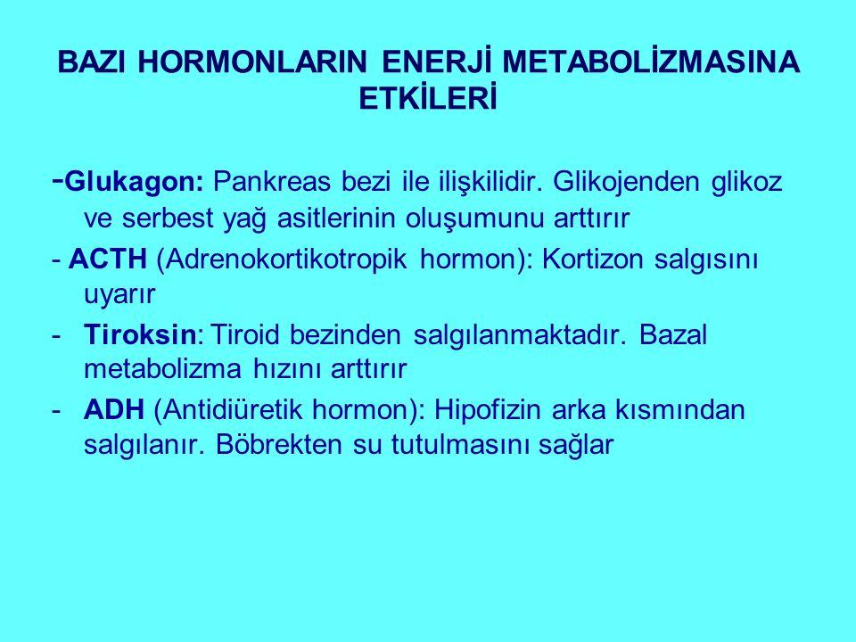 BAZI HORMONLARIN ENERJİ METABOLİZMASINA ETKİLERİ