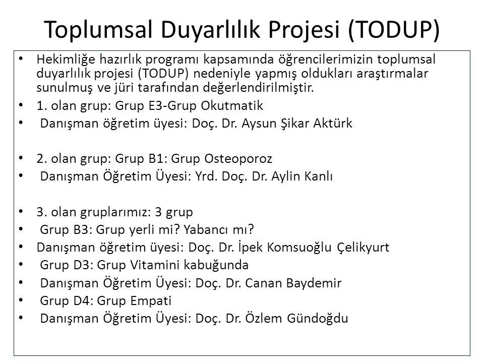 Toplumsal Duyarlılık Projesi (TODUP)