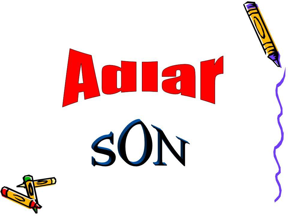 Adlar SON