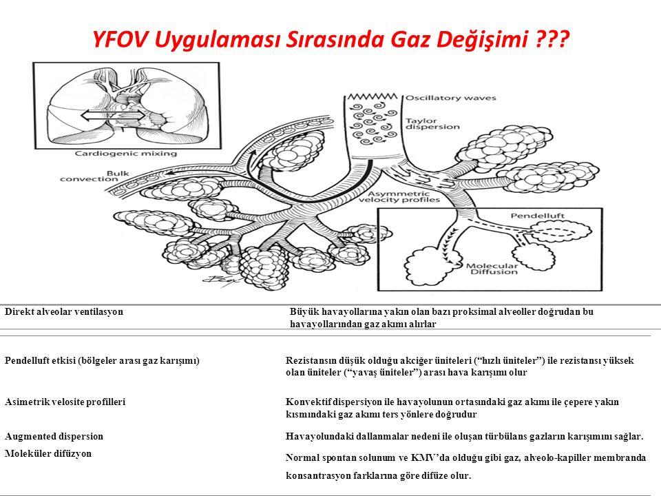 YFOV Uygulaması Sırasında Gaz Değişimi