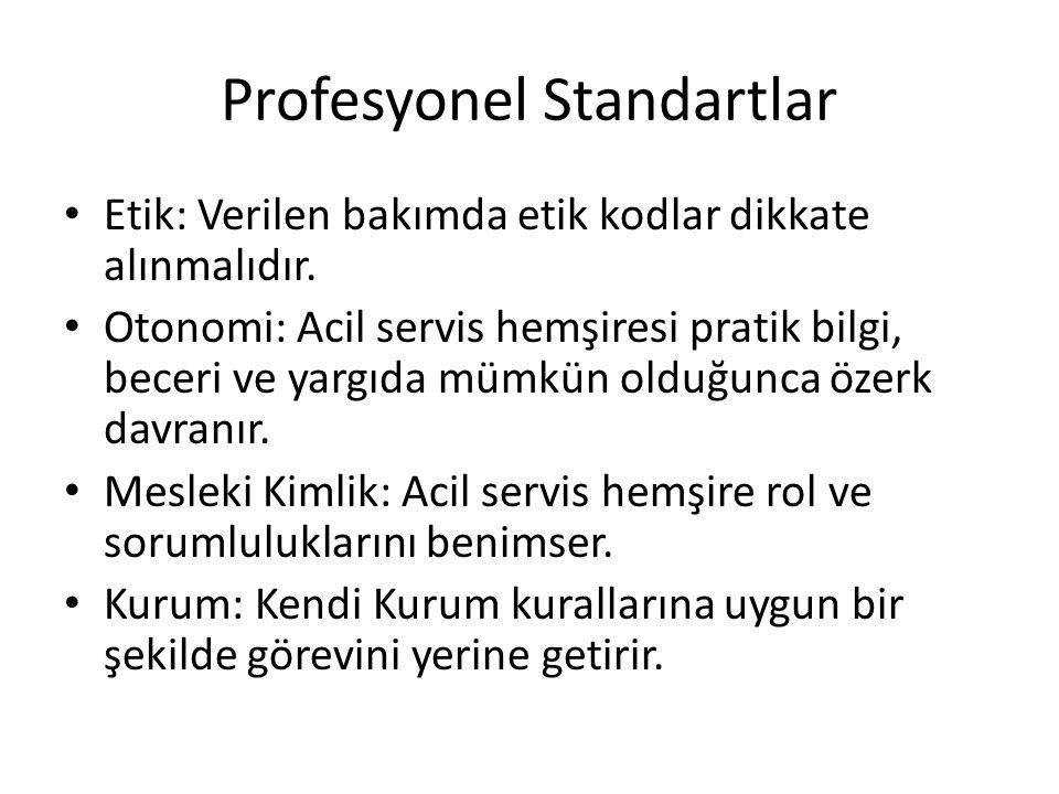 Profesyonel Standartlar