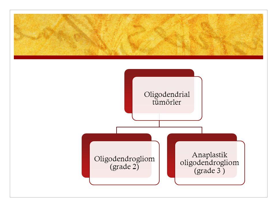 Oligodendrial tümörler