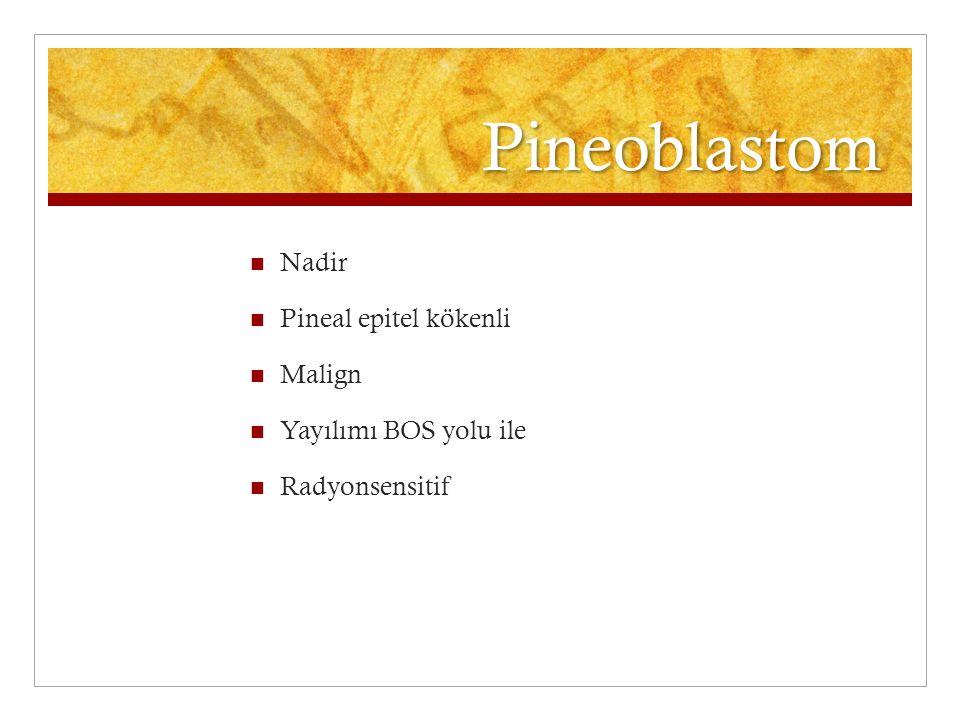 Pineoblastom Nadir Pineal epitel kökenli Malign Yayılımı BOS yolu ile