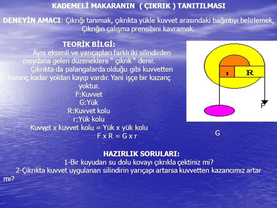 KADEMELİ MAKARANIN ( ÇIKRIK ) TANITILMASI