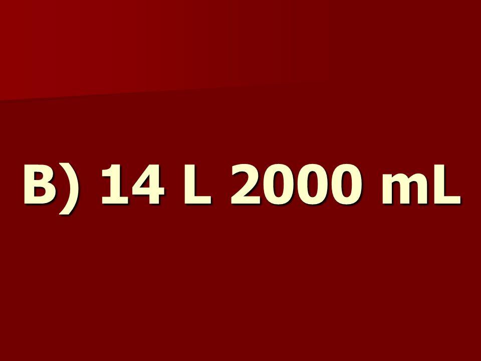 B) 14 L 2000 mL
