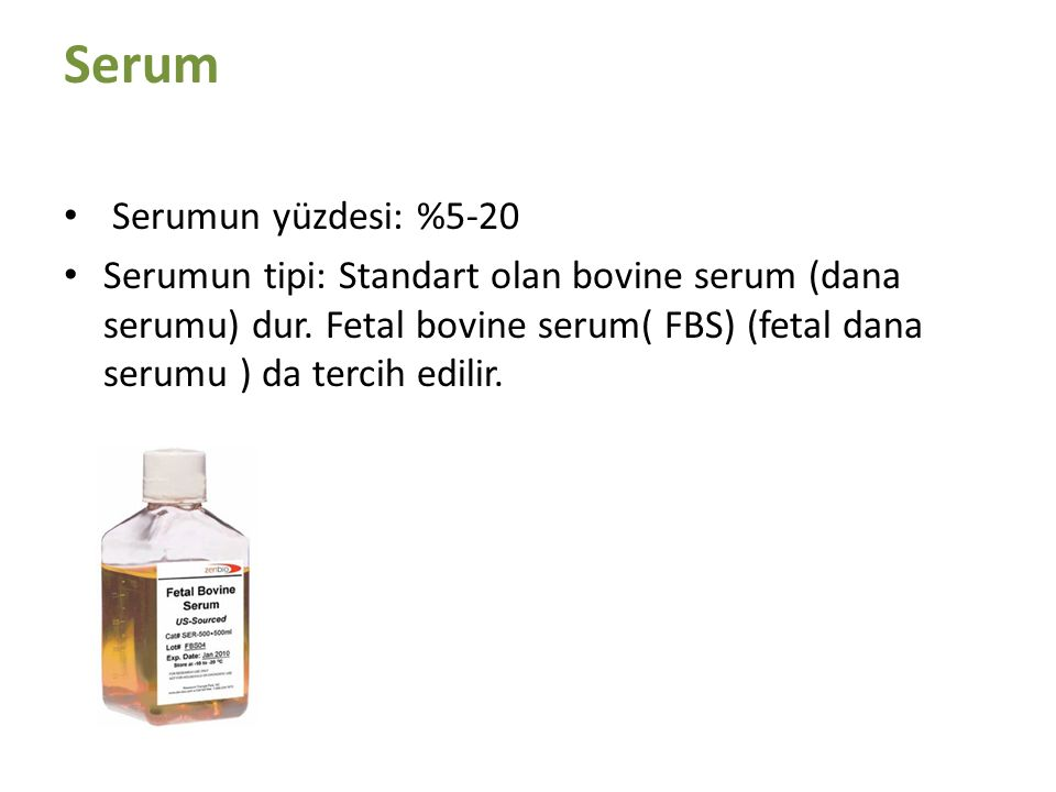 Serum Serumun yüzdesi: %5-20