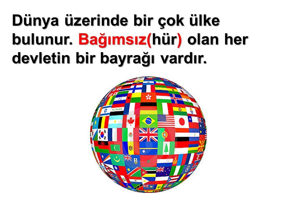 Dünya üzerinde bir çok ülke bulunur