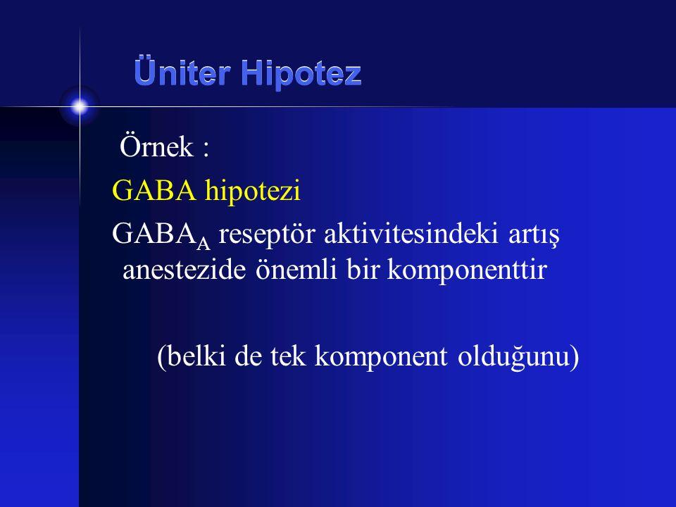 Üniter Hipotez Örnek : GABA hipotezi