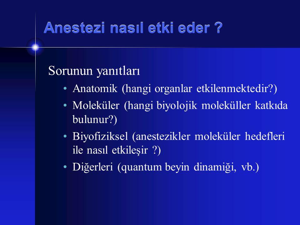 Anestezi nasıl etki eder