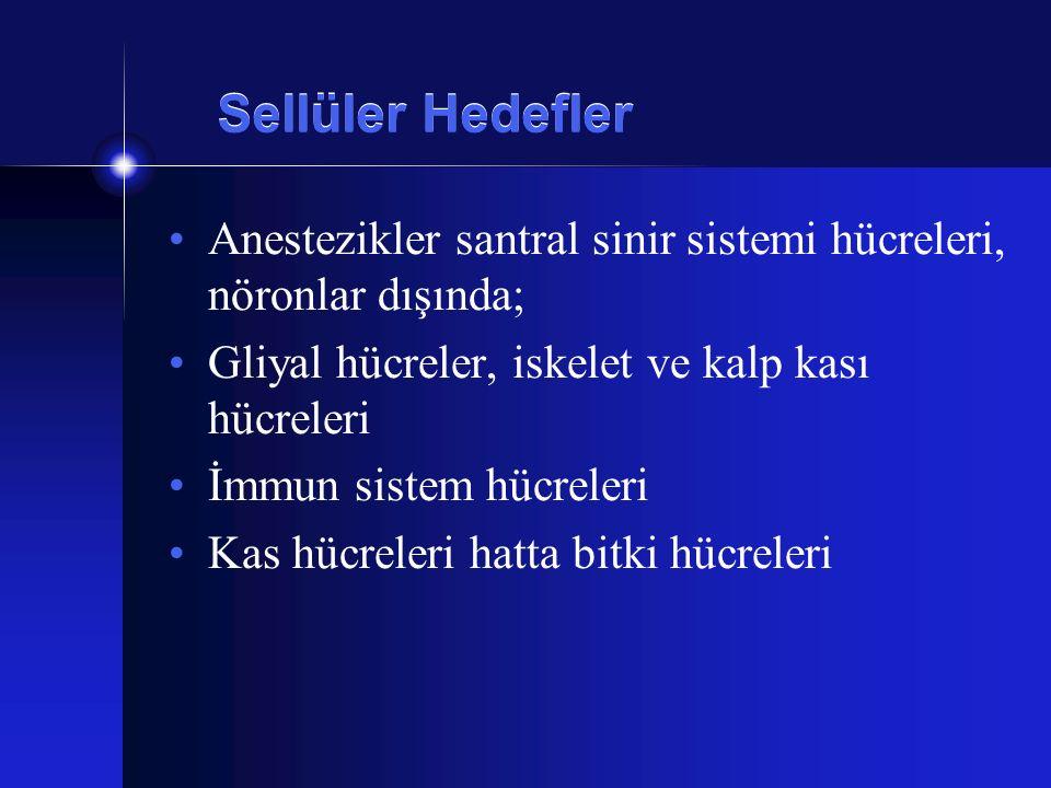 Sellüler Hedefler Anestezikler santral sinir sistemi hücreleri, nöronlar dışında; Gliyal hücreler, iskelet ve kalp kası hücreleri.