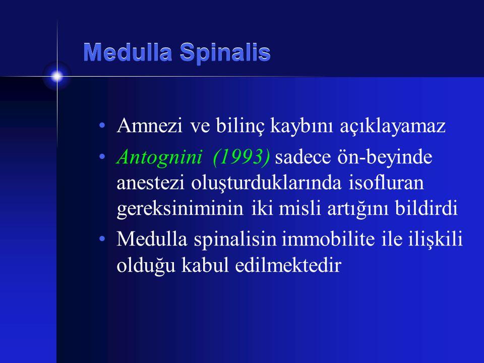 Medulla Spinalis Amnezi ve bilinç kaybını açıklayamaz
