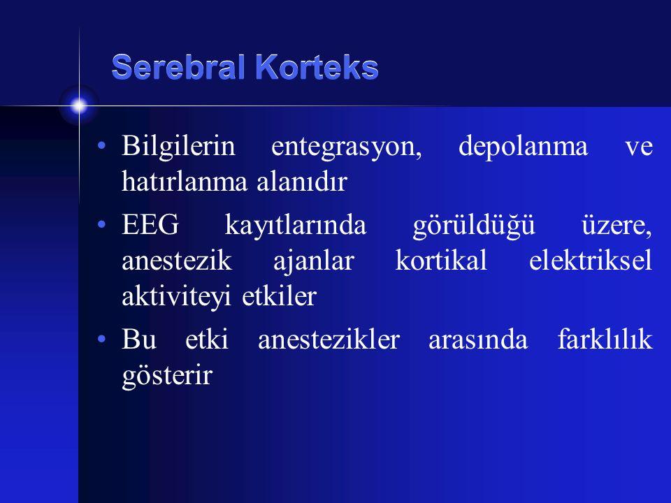 Serebral Korteks Bilgilerin entegrasyon, depolanma ve hatırlanma alanıdır.