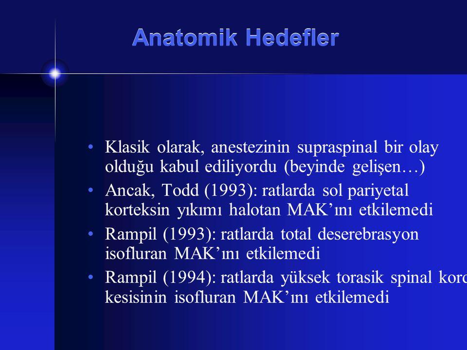 Anatomik Hedefler Klasik olarak, anestezinin supraspinal bir olay olduğu kabul ediliyordu (beyinde gelişen…)
