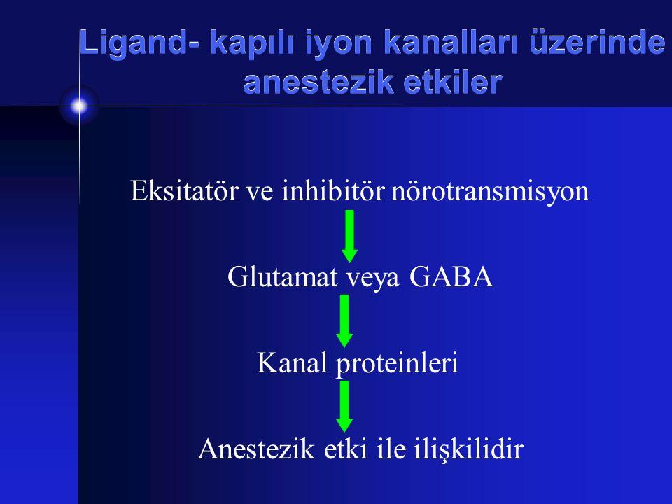Ligand- kapılı iyon kanalları üzerinde anestezik etkiler