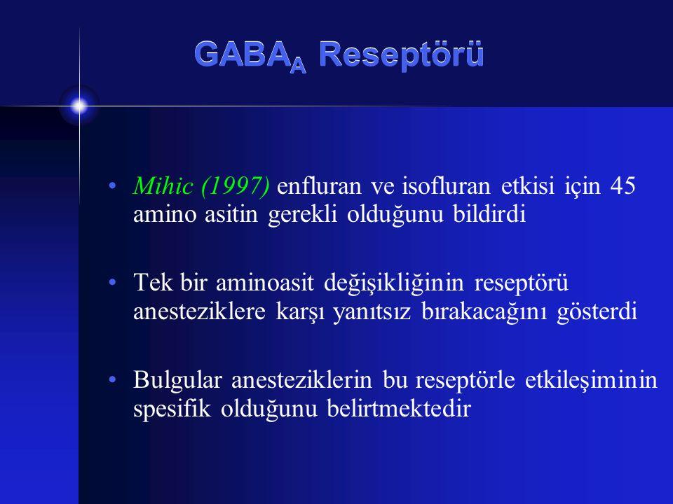 GABAA Reseptörü Mihic (1997) enfluran ve isofluran etkisi için 45 amino asitin gerekli olduğunu bildirdi.