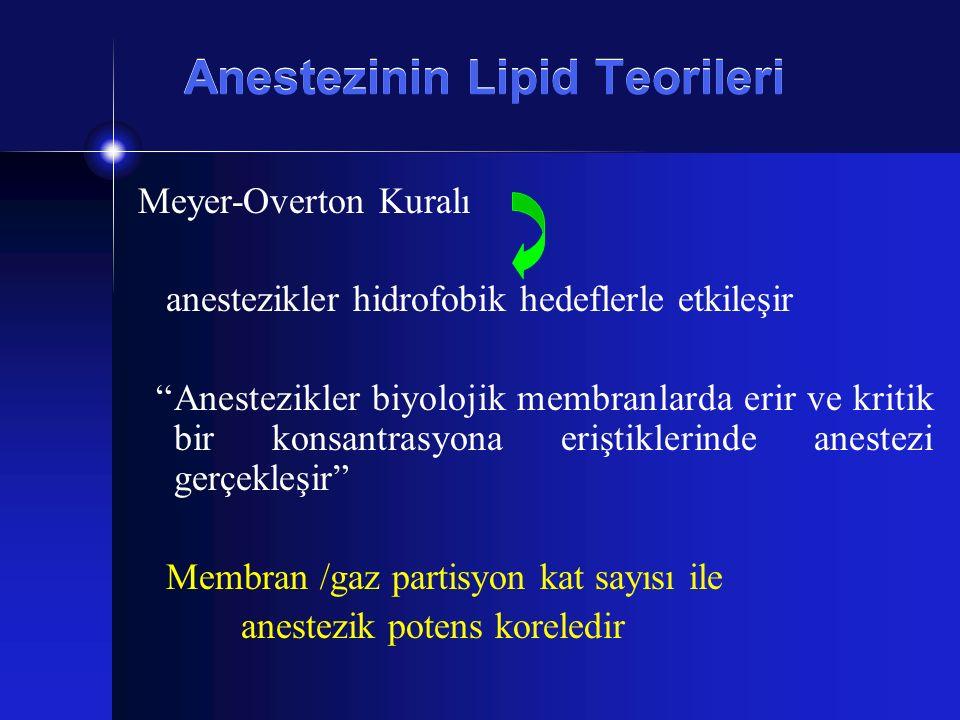 Anestezinin Lipid Teorileri