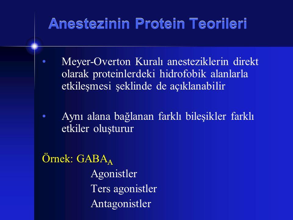 Anestezinin Protein Teorileri