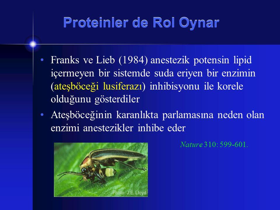 Proteinler de Rol Oynar
