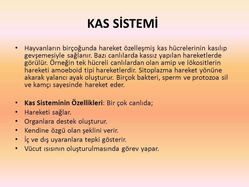 KAS SİSTEMİ
