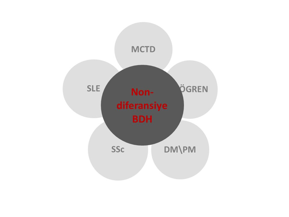 UCTD MCTD SJÖGREN DM\PM SSc SLE Non-diferansiye BDH