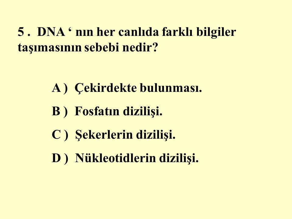 5 . DNA ' nın her canlıda farklı bilgiler taşımasının sebebi nedir
