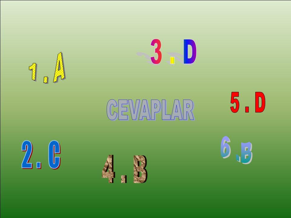 3 . D 1 . A 5 . D CEVAPLAR 6 .B 2 . C 4 . B