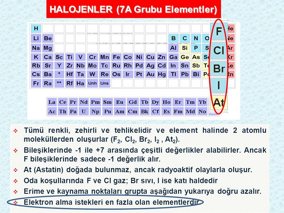 HALOJENLER (7A Grubu Elementler)