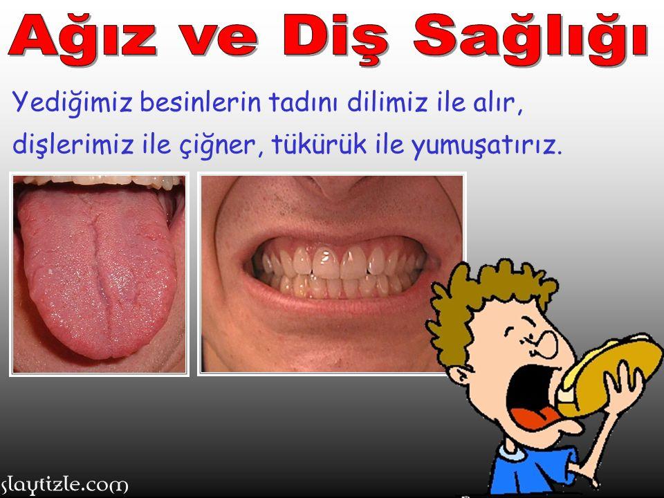 Ağız ve Diş Sağlığı Yediğimiz besinlerin tadını dilimiz ile alır, dişlerimiz ile çiğner, tükürük ile yumuşatırız.