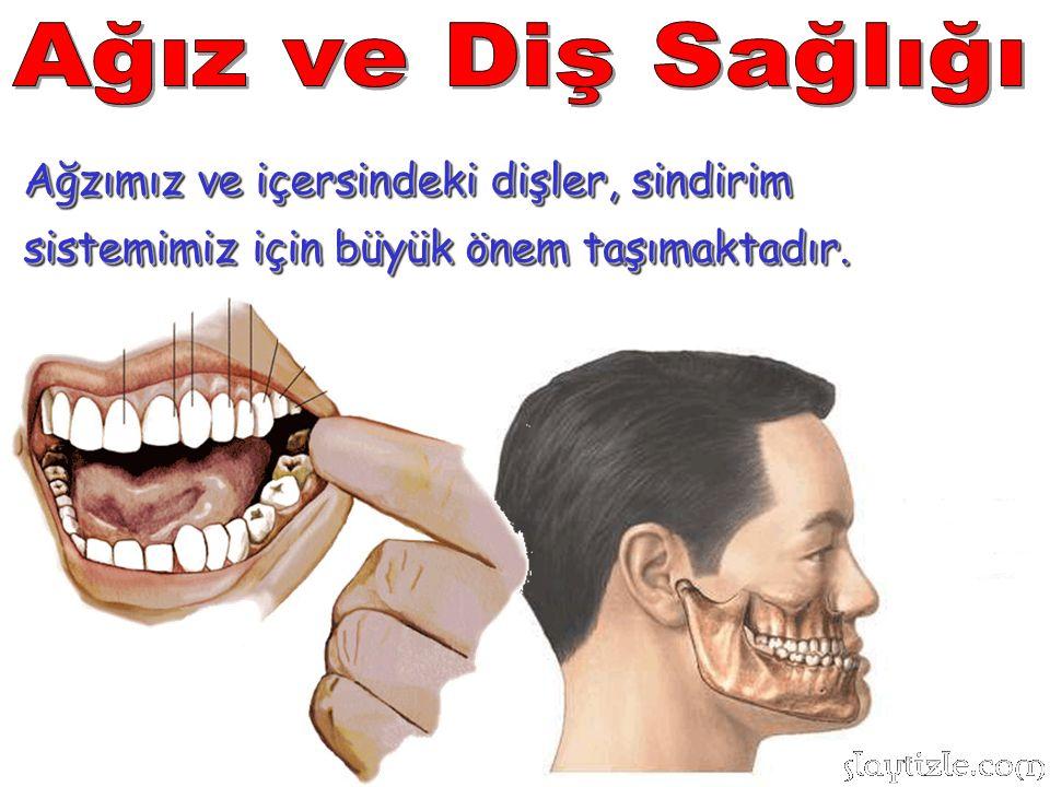 Ağız ve Diş Sağlığı Ağzımız ve içersindeki dişler, sindirim sistemimiz için büyük önem taşımaktadır.