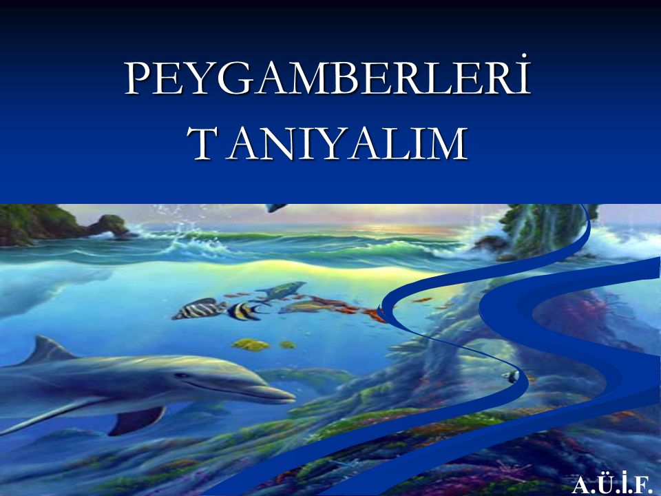 PEYGAMBERLERİ T ANIYALIM