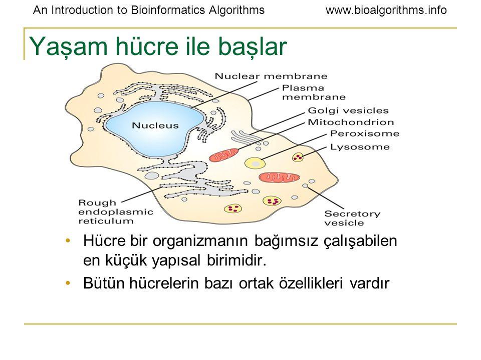 Yaşam hücre ile başlar Hücre bir organizmanın bağımsız çalışabilen en küçük yapısal birimidir.