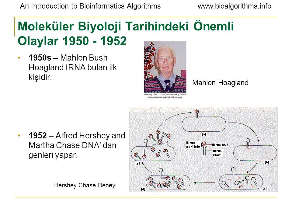 Moleküler Biyoloji Tarihindeki Önemli Olaylar 1950 - 1952
