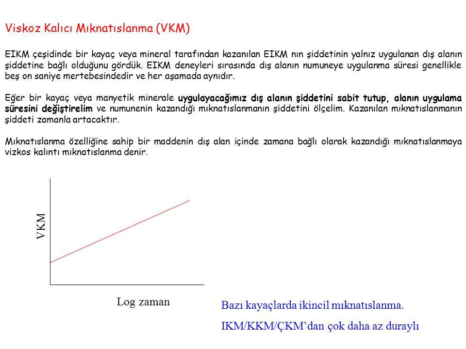 Viskoz Kalıcı Mıknatıslanma (VKM)