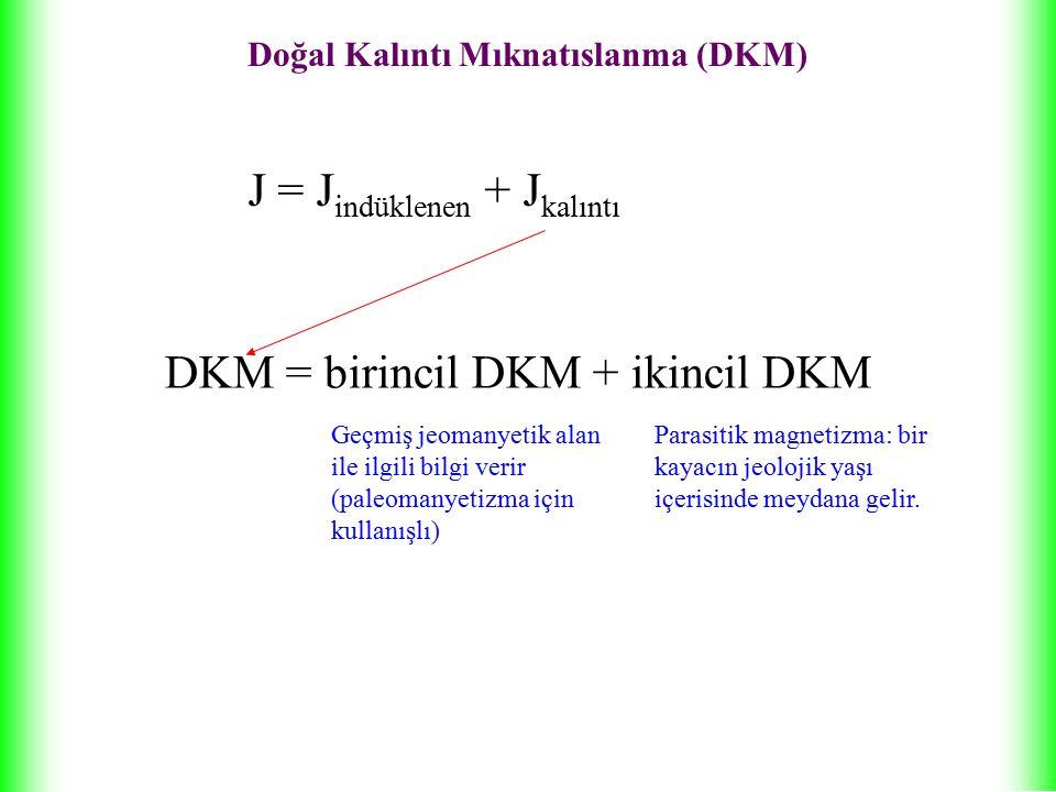 Doğal Kalıntı Mıknatıslanma (DKM)