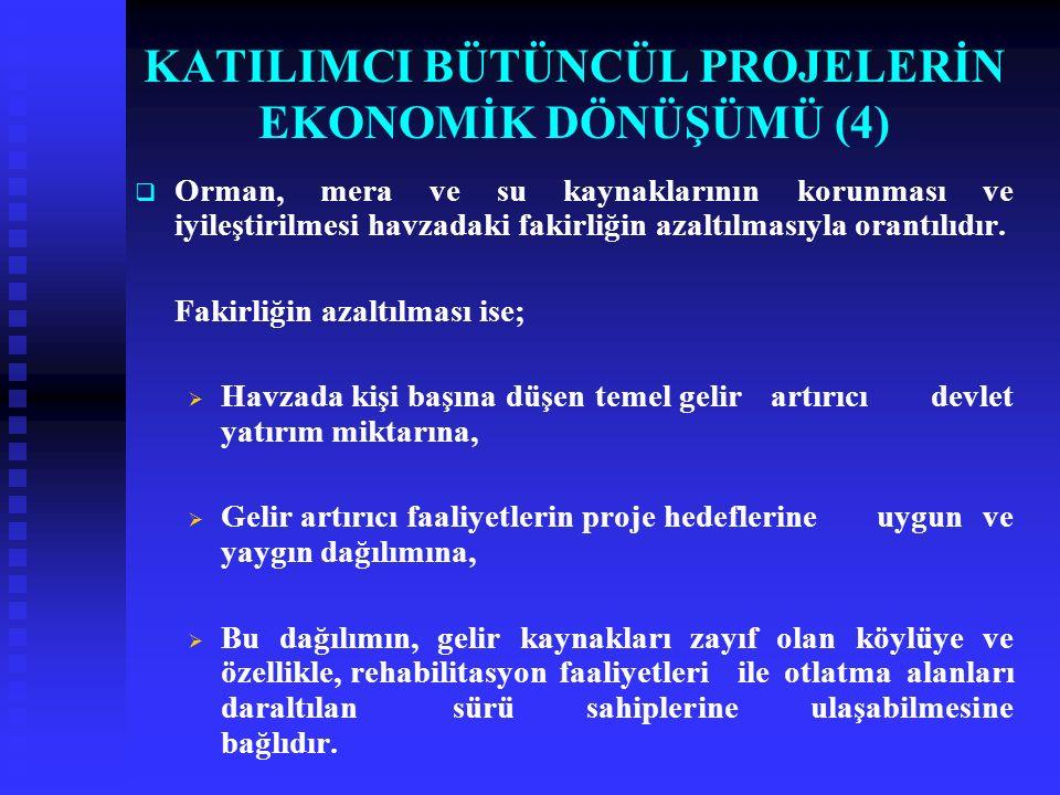 KATILIMCI BÜTÜNCÜL PROJELERİN EKONOMİK DÖNÜŞÜMÜ (4)