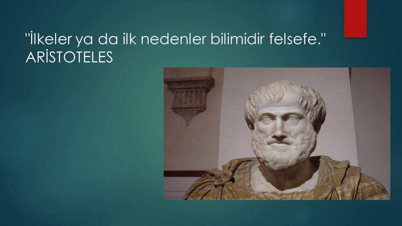 İlkeler ya da ilk nedenler bilimidir felsefe.