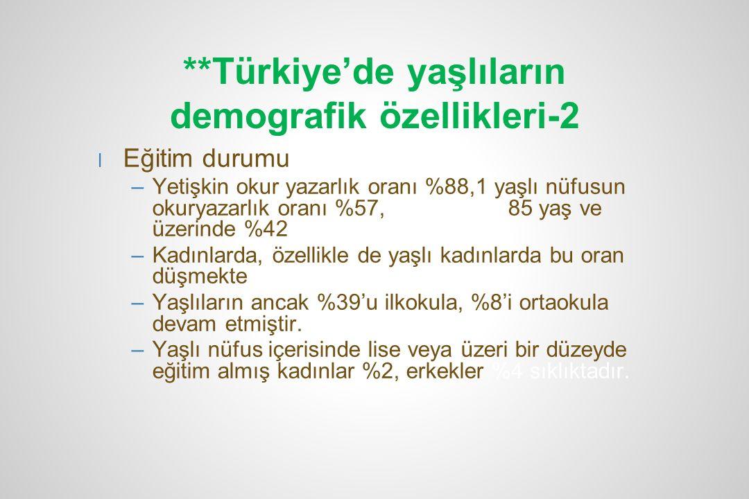 **Türkiye'de yaşlıların demografik özellikleri-2